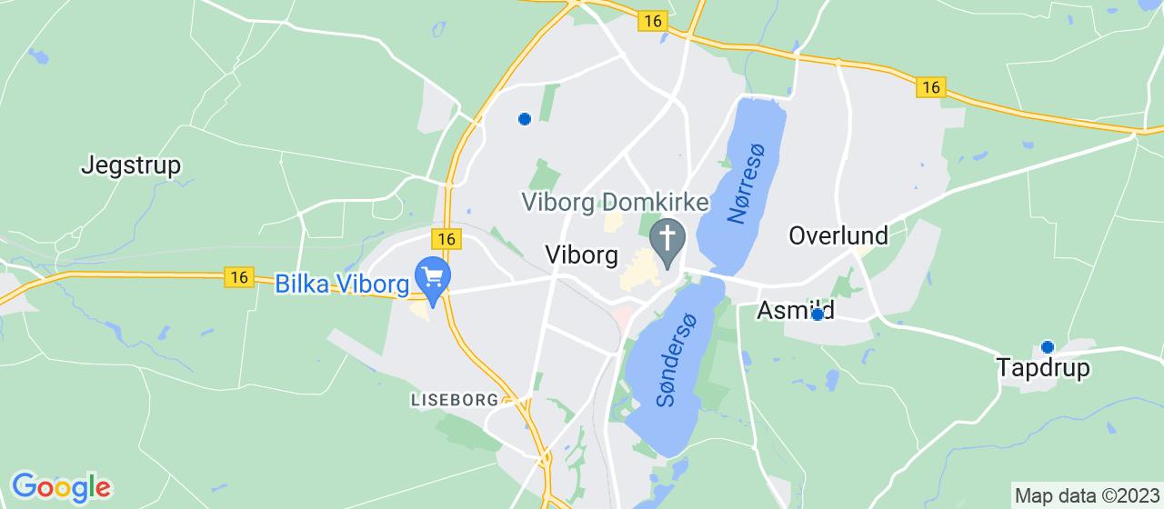 tagrensningsfirmaer i Viborg