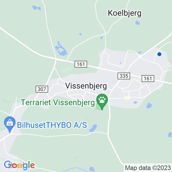 flyttefirmaer i Vissenbjerg