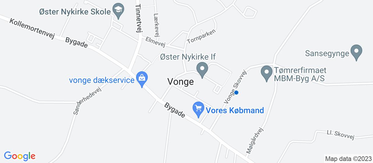 vvsfirmaer i Vonge