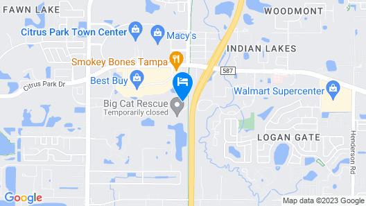 Courtyard by Marriott Tampa Northwest/Veterans Expressway Map