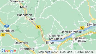 Ruedesheim am Rhein