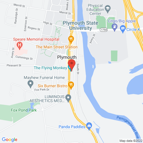 Google Map for The Flying Monkey