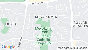 Meyokumin