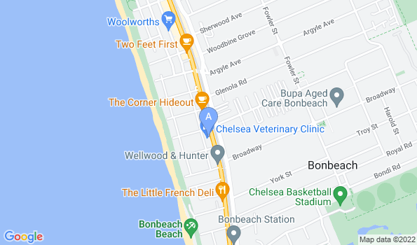 Street map of Chelsea Veterinary Clinic