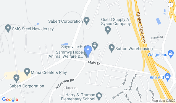 Street map of Sayrebrook Veterinary Hospital
