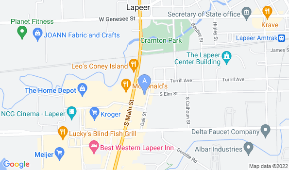 Street map of Animal Medical Center of Lapeer